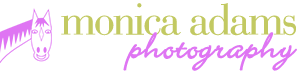 Monica Adams Photography - - - - - Austin, TX